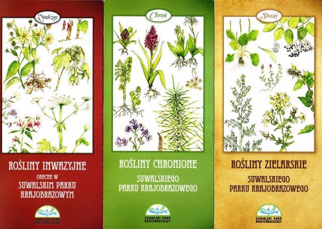 Ulotki Rośliny inwazyjne, chronione, zielarskie