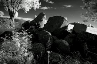 Kamienica suwalska. Fot.P.Wypych