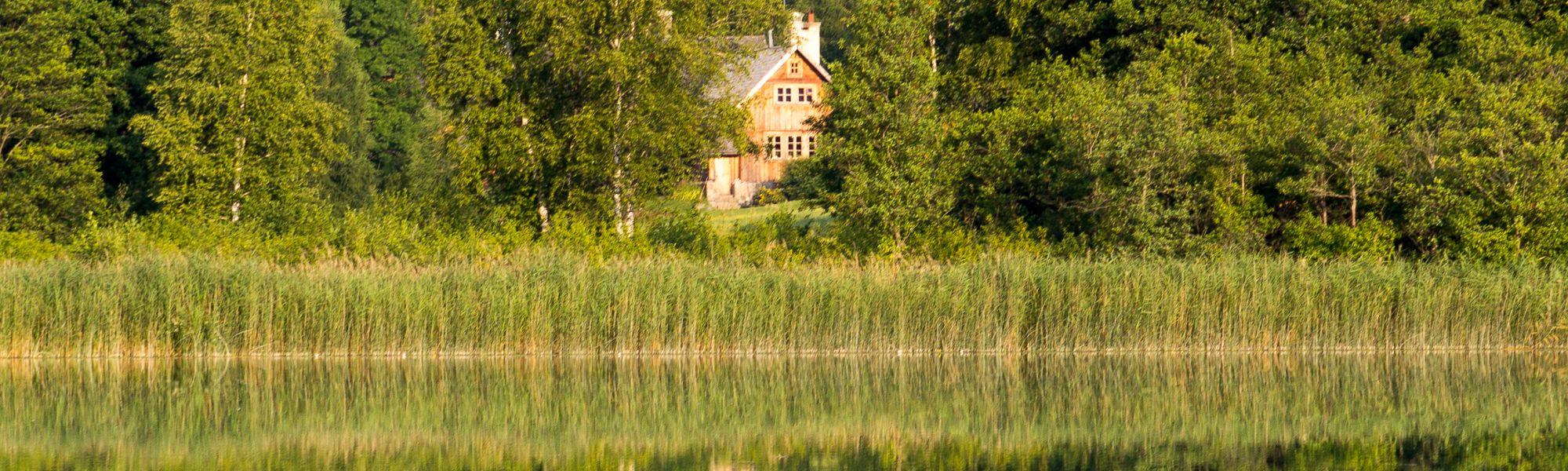 Nad jeziorem Jaczno