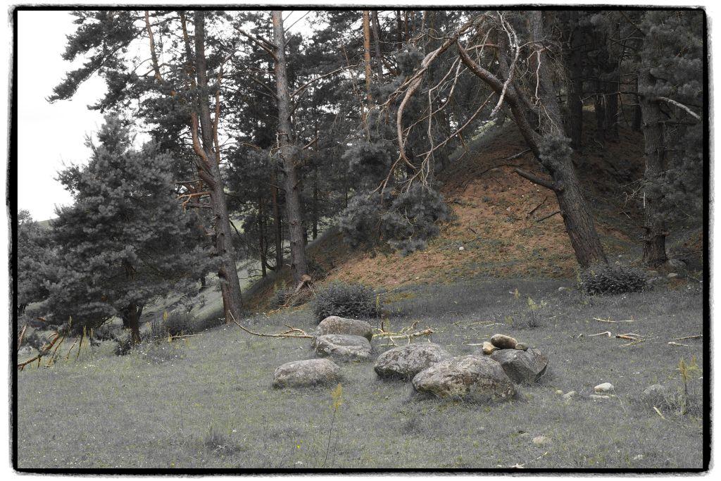 Okolice Góry Cisowej. Fot.P.Wypych