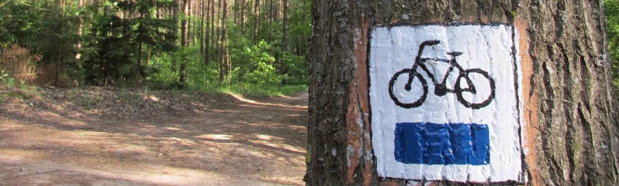 """Oznakowanie niebieskiej trasy rowerowej """"Na Górę Zamkową"""""""