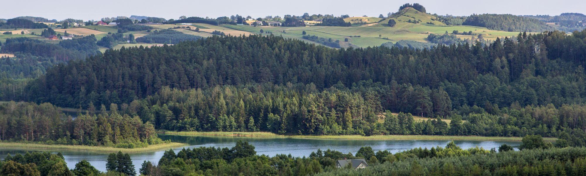 Panorama smolnicka