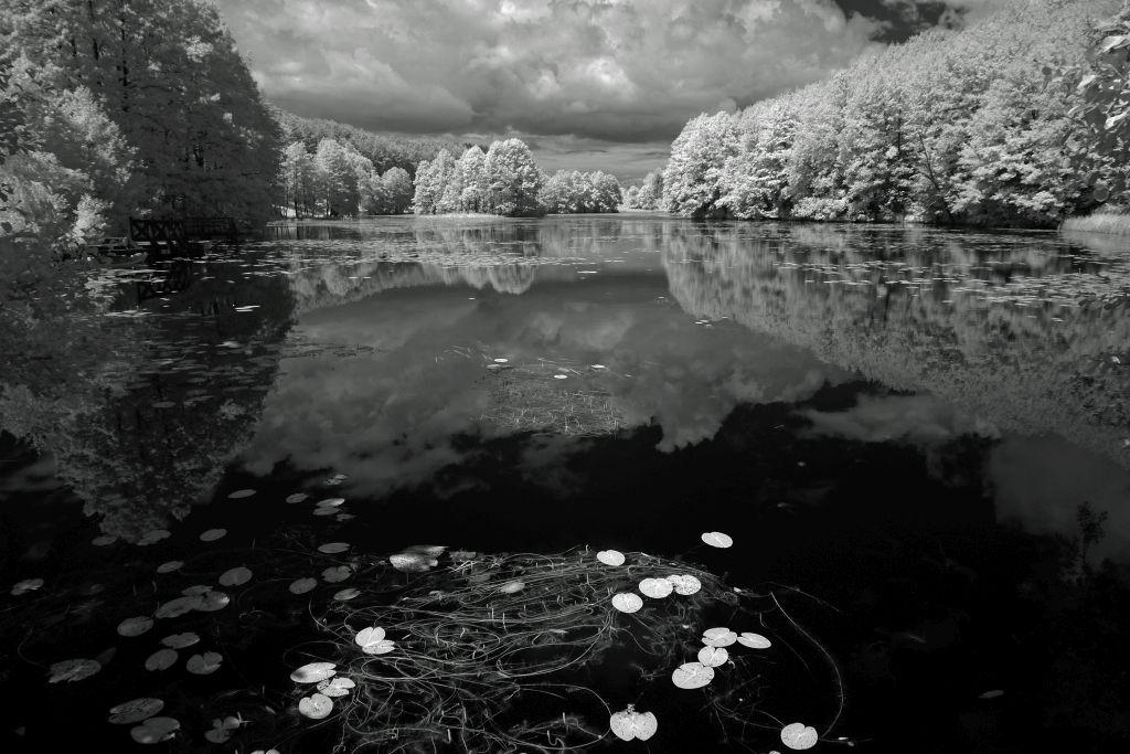 Staw Turtulski. Fot.P.Wypych