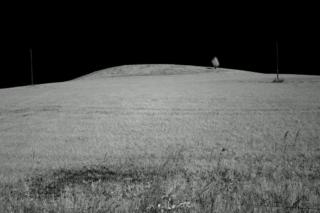 Suwalski Park Krajobrazowy. Fot.P.Wypych
