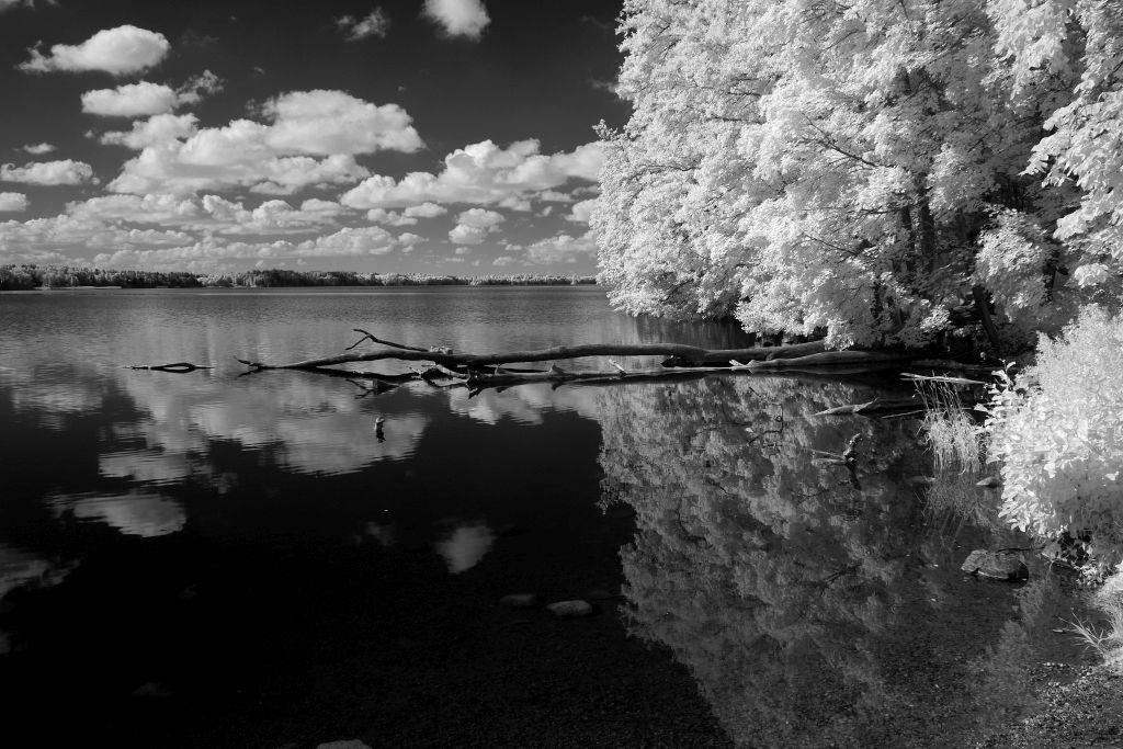 Jezioro Hańcza. Fot.P.Wypych