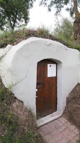 Czynna ochrona nietoperzy poprzez remont i zabezpieczenie piwniczek ziemnych