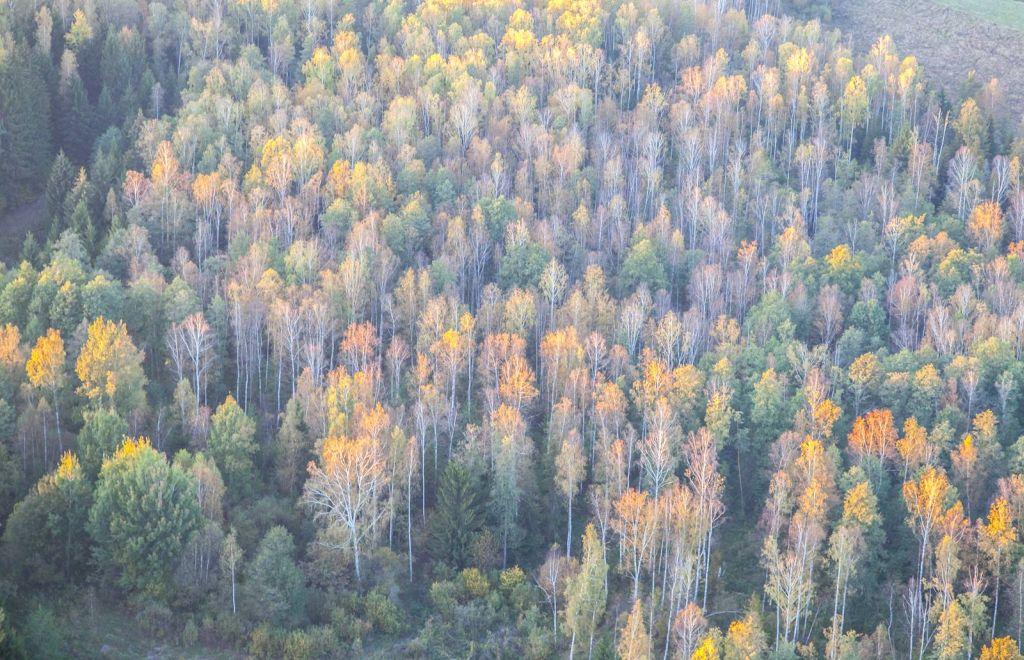 Jesień w Suwalskim Parku Krajobrazowym. Fot.H.Stojanowski