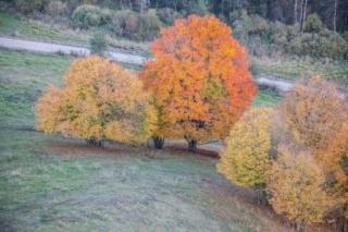 Jesień w okolicy Turtula. Fot.H.Stojanowski