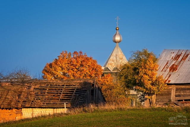 Jesienna Molenna w Wodziłkach. Fot.M.Giersa