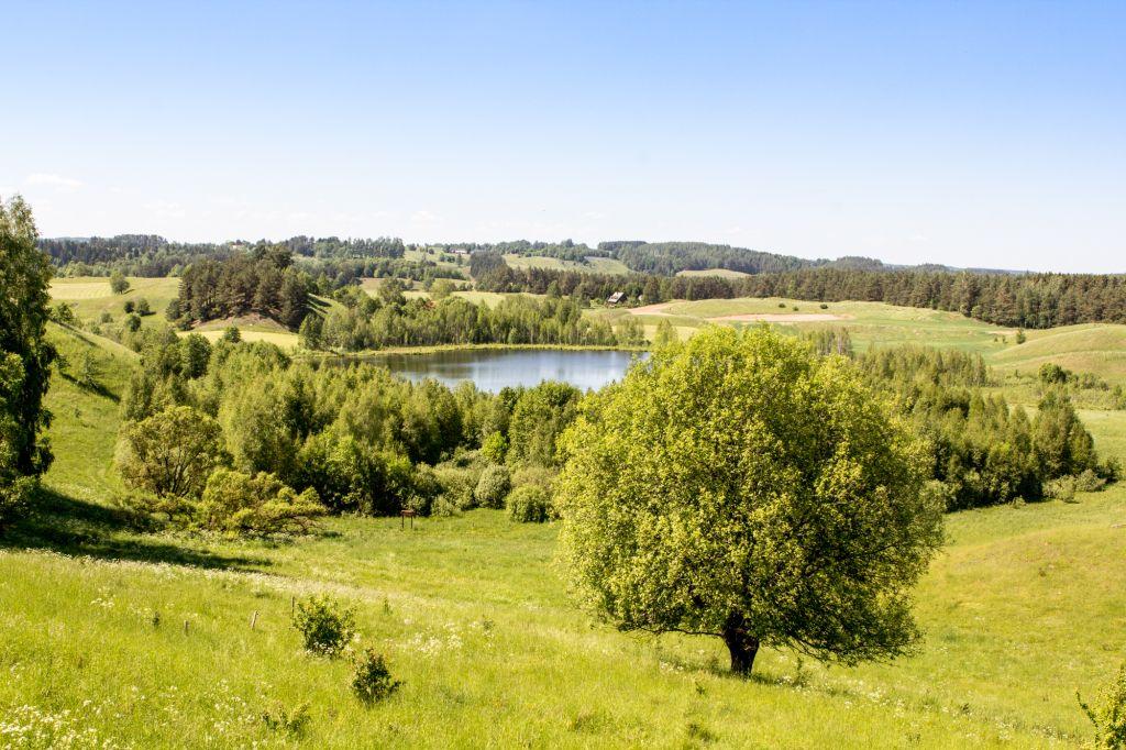 Jezioro Linówek