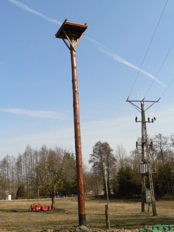 Platforma dla bociana