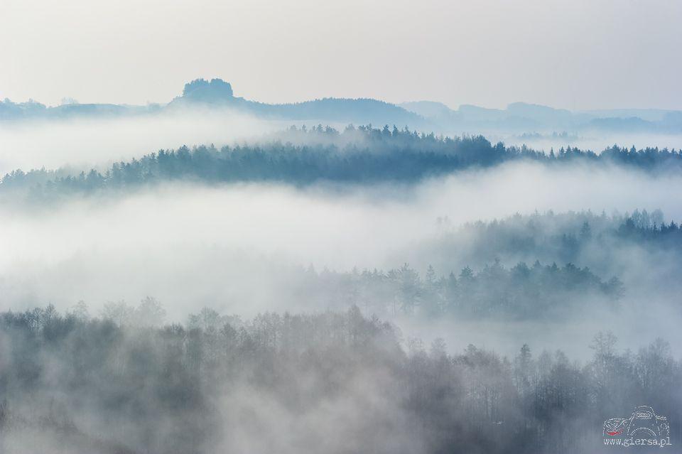 Widok na Cisową Górę. Fot.M.Giersa