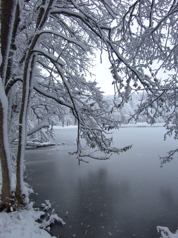 Zimowe oblicze jeziora Hańcza