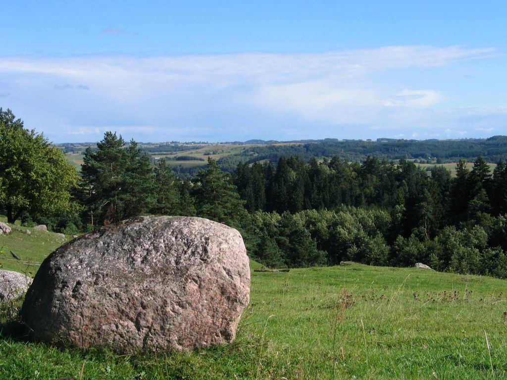 """Rezerwat przyrody """"Głazowisko Łopuchowskie"""""""