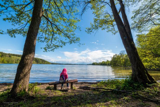 Nad jeziorem Hańcza. Fot.K.Mierzejewski