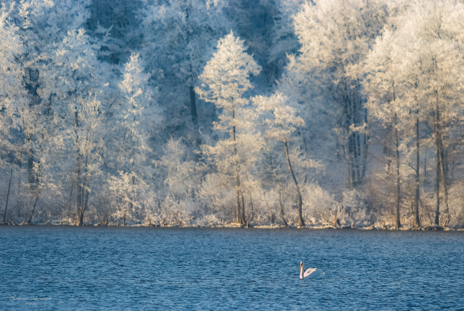 Początek zimy nad jeziorem Hańcza. Fot.K.Mierzejewski