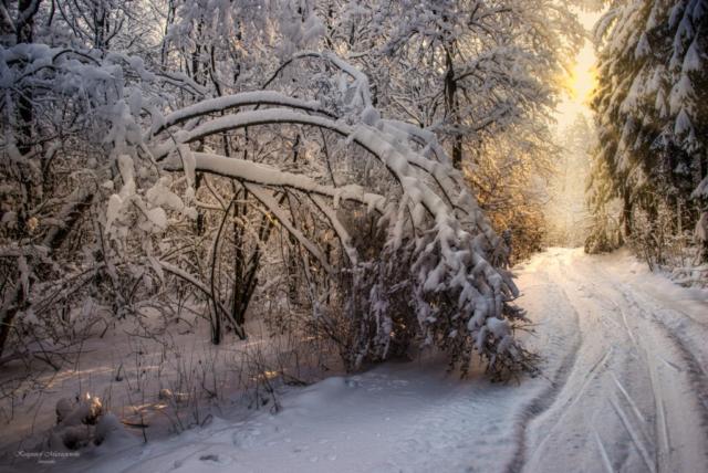 Śnieżna zima w SPK.Dzierwany. Fot.K.Mierzejewski