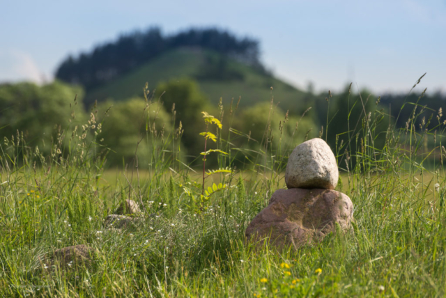 W okolicy Góry Cisowej. Fot.K.Mierzejewski