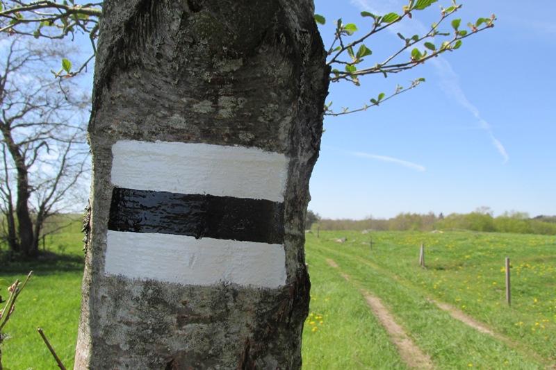 oznakowanie czarnego szlaku pieszego Błaskowizna - Łopuchowo