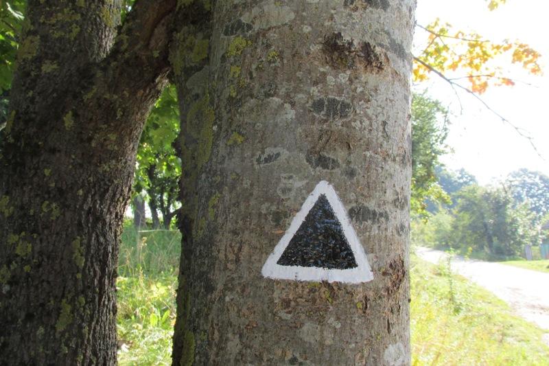 """oznakowanie szlaku pieszego """"Na Górę Leszczynową"""""""