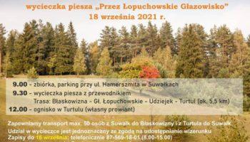 """plakat promujący wycieczkę pieszą """"Przez Łopuchowskie Głazowisko"""""""